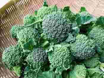 ブロッコリーは花蕾(からい)とよばれるつぼみの部分をメインで食べますが、茎や葉っぱもブロッコリーの風味をより強く味わえる部分として活用できます。