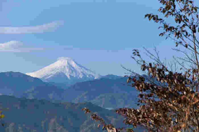 天候に恵まれると、山頂からは日本最高峰の富士山までも臨むことができます。