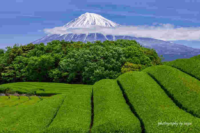 日本を代表する「富士山」は、私たち日本人には特別思い入れのある山ではないでしょうか。日本一高いこの山は、昔から日本人の信仰の対象でもありました。四季折々の姿を見せてくれる富士山は、ただその姿を臨むだけでパワーをもらえそうな、まさにパワースポット。