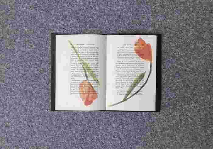 古書に押し花のコラージュが印字されているやまもとまなさんのZINE『PRESSED FLOWERS』。「書籍に挟まれていつの日か完成する押し花の存在をそのままZINEに落とし込んだ」と言う本作品。テキストの意味合いも考慮しながら選書した洋書に、さまざまな押し花のコラージュをのせた、大胆でありながらも繊細さを感じる美しいZINEです。