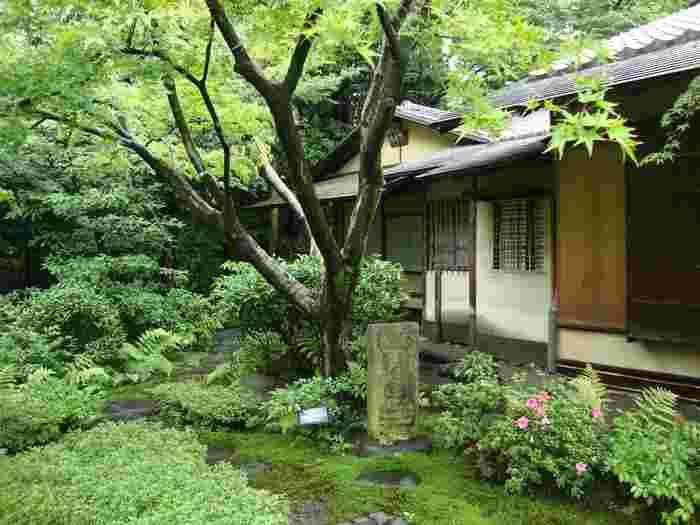 表参道駅から徒歩で行ける「根津美術館」。日本や東アジアの様々な古美術を所蔵、展示しています。それらの美術品もさることながら、とても魅力的なのが季節の移ろいを感じさせる広大な日本庭園。都会の真ん中で深呼吸しに訪れたいオアシスです。