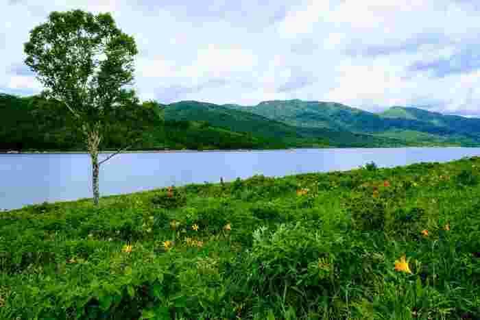 花と水に囲まれていると、涼しい風に癒されます。ハイキング初心者の方でも歩きやすいので、女性同士の日帰り旅にもぴったりです。