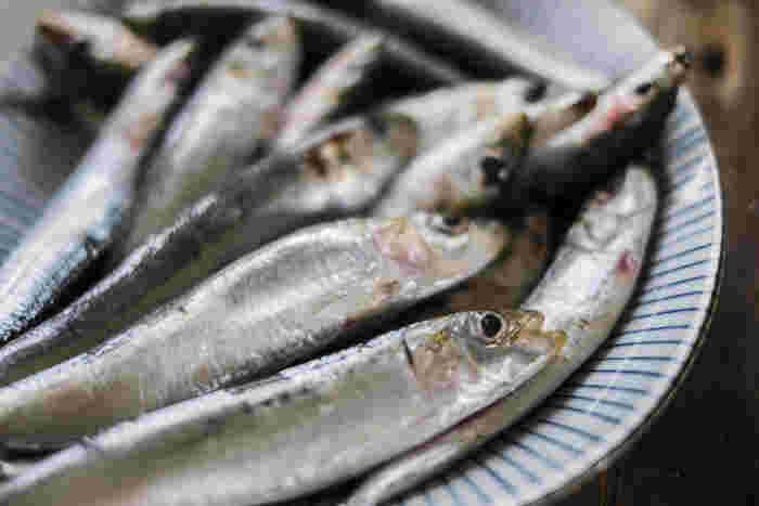 EPAとは魚に含まれているオメガ3系の脂肪酸のことです。必須栄養素であるにも関わらず、人の体内で作ることができません。いわしにはEPAが多く含まれており、いわし缶なら身はもちろん、よりEPAが豊富な頭や内臓も丸ごと食べられるので効率良く栄養を摂取できます。