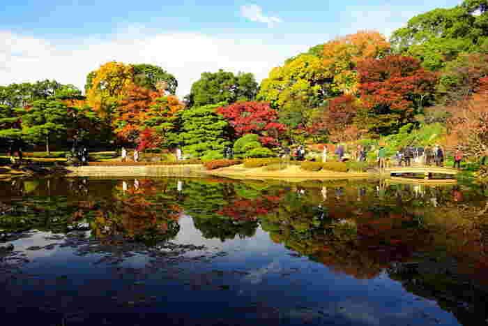 広大な敷地は美しく整備されていて、都心の癒しスポットとしても人気です。秋は紅葉も楽しめ、週末に気軽に立ち寄れるアクセスの良さも魅力です。なお、現在皇居東御苑本丸地区では大嘗宮仮設工事が行われているため、立入り制限のあるエリアがありますので、公式HPをチェックしてお出かけくださいね。