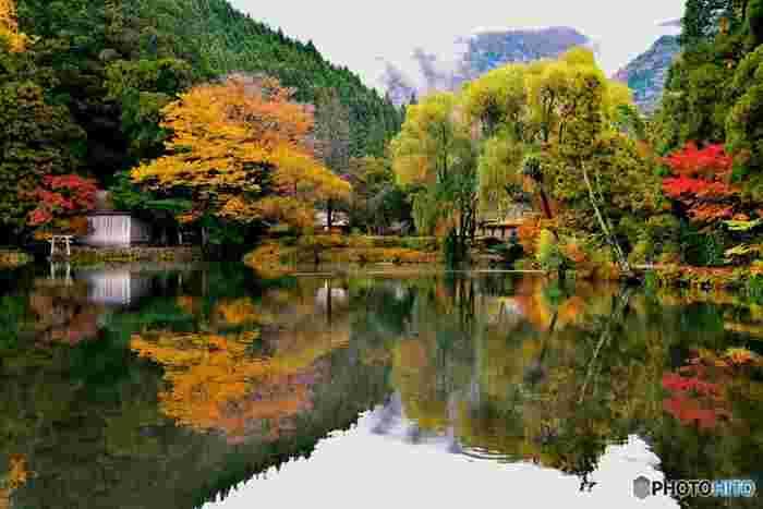 湯布院を代表する観光スポットの一つである金鱗湖。冬の朝に湯気が立ち、温泉が湧く湖として知られています。秋になると金鱗湖の周辺は赤・橙・黄色に色付き、大分県内でも紅葉が綺麗だと評判です。