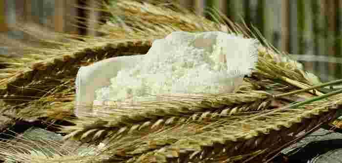 グルテンは、主に小麦やライ麦などの穀物に含まれるタンパク質の一種で、「グルテンフリー」とはそれらを摂らない食事法のことをいいます。欧米の著名人が実践したことで話題となり、アレルギーの方はもちろん、グルテンフリーにしてから調子が良くなったという声も多く、今のブームに繋がっています。