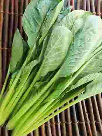 小松菜はビタミン類やミネラルなどが豊富で、非常に栄養価が高い緑黄色野菜です。皮膚や粘膜の保護・免疫力の向上などに役立つβカロテン、貧血予防効果のある鉄、骨の健康に欠かせないカルシウムにおいては、ほうれん草よりも含有値が高いほど。旬にたくさん食べたい野菜の一つです。