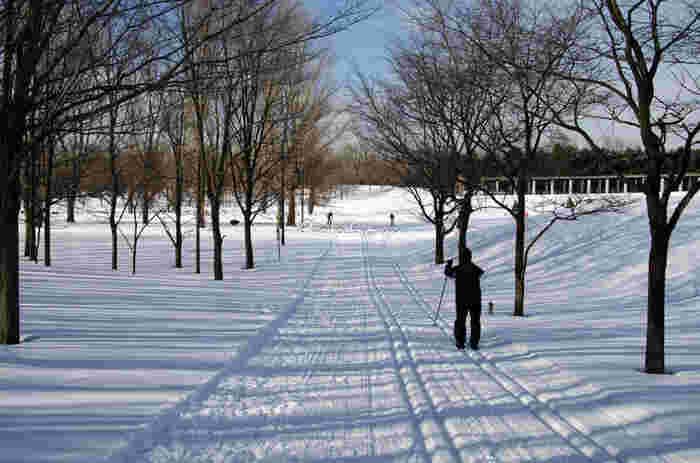 """北欧発祥の""""歩くスキー""""クロスカントリー。木々の間を縫いながらゆったりと冬の自然を楽しむ雪上ハイキングです。"""