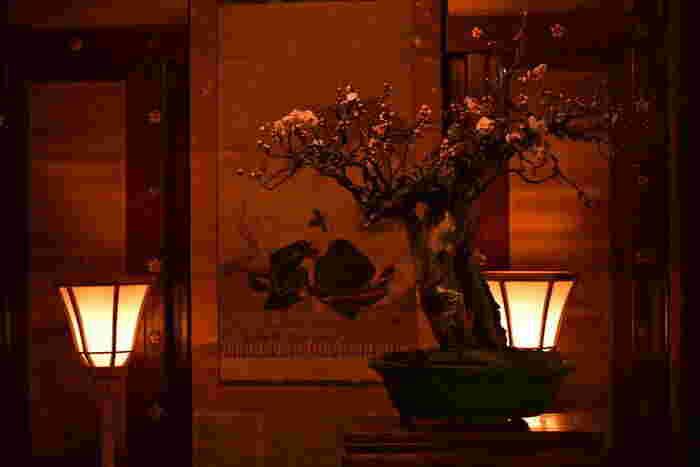 大阪天満宮内にある書院百畳敷の参集殿では、「てんま天神梅まつり・大盆梅展」が開催されます。