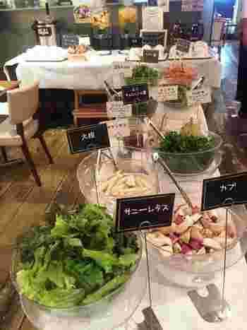 こちらが人気のサラダバー。無農薬かつ化学肥料を一切使用していない自慢の野菜たちを、好きなだけ食べられます。自家製のパンやスープ、デトックスウォーターも自由に楽しめる、魅力的な内容です。
