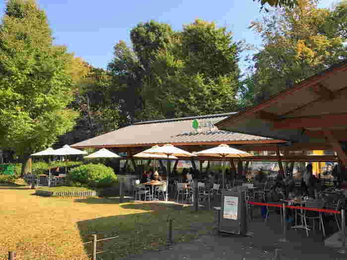 「上野の森PARK SIDE CAFE」はその名の通り上野恩賜公園の中にあるカフェです。席数も166席と大変広く、その半分はテラス席となっているため、お天気の良い日には公園散策や美術館の帰りなどにふらっと立ち寄ることができます。店内からもテラス席からも上野公園の自然を満喫できる、癒しのお店です。