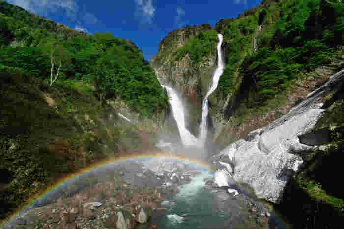 日本一の落差を持つ称名滝(しょうみょうだき)。なんとその落差は約350m!雪解け水が多い春には、称名滝の右側にはハンノキ滝が現れますので、2つの滝の流れを同時に楽しむことができるのだそう。