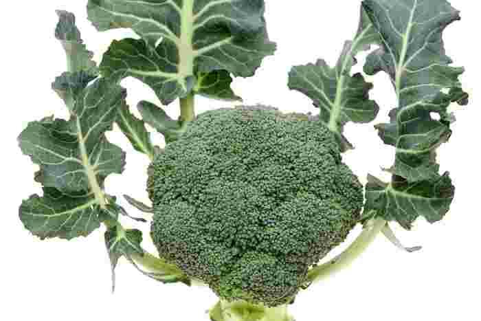 野菜の葉っぱや、皮、根っこの部分など・・・まな板の上に残るたびに「これって食べられる?」「もったいない?」と、それらの扱い方に迷うことって多いですよね。  青菜のゆで汁も、「ビタミンCが溶け出てそう」と捨てるのが惜しい気持ちになることもしばしば。  そこで今回は、そんな気持ちをすっきり解消。よくある疑問に、ひとつずつお答えしていきます。