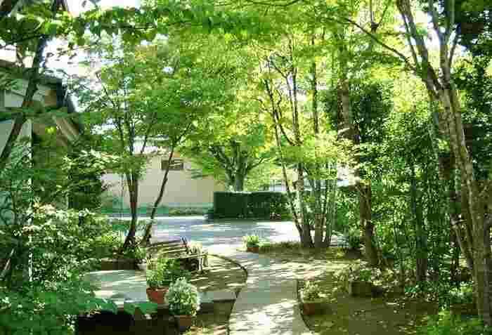 イングリッシュガーデン風あり、苔が美しい和のお庭あり…手入れの行き届いたお庭に身を置くだけで、充ち足りた気持ちに。