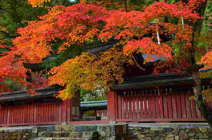 【仁王門を入り右側、書院の奥にある「和気公霊廟(わけこうれいびょう)」。昭和初期建立。ここは、かつて和気清麻呂公を祀っていた「護王神社」の跡地。「護王神社」は、京都御所傍らに移築されています。】