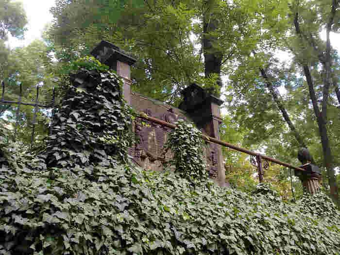 15世紀から18世紀末まで墓地としての役割を担っていた旧ユダヤ人墓地は、ヨーロッパにおける最大ユダヤ人墓地です。緑の蔦に覆われた美しい壁と、樹々の間差し込む木漏れ日が気持ち良い旧ユダヤ人墓地は、墓所とは思えないほど美しく、まるで大きな森のようです。