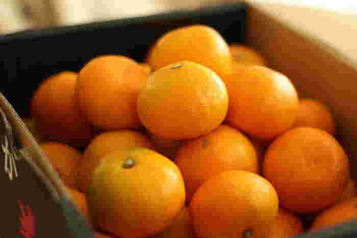 冬の風物詩、「こたつでみかん」。みかんと言えば、みずみずしい甘さとさわやかな香りでお茶の間の人気者。ナイフもいらず、手も汚さずに手軽に食べられるみかん。そのまま食べるだけでなく、実はアレンジも効く万能選手なんです。