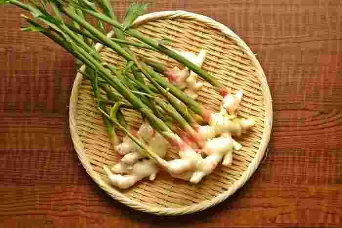 薬味じゃなく、メインでいただこう◎『新生姜』の美味しい楽しみ方