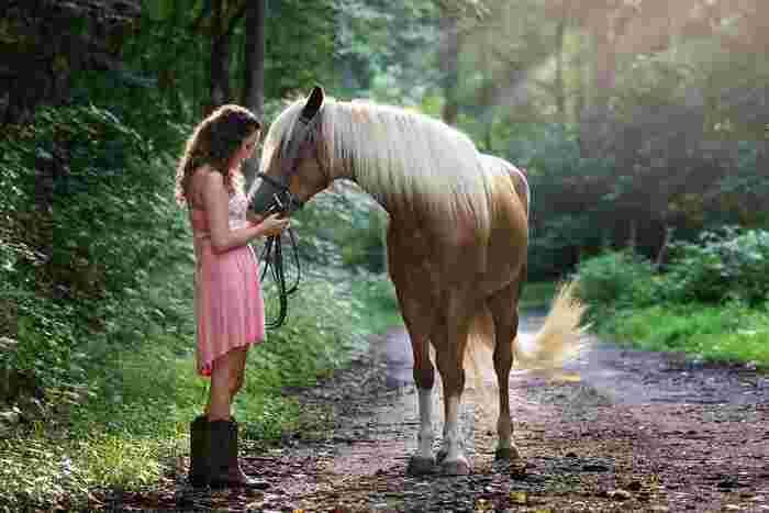 童話と言っても、子どものための優しいものではなく、影も感じさせる大人のためのお話。  特に「アウグスツス」は、大人たちの心を震わす作品として有名です。  「みんなに好かれたい」「人生って何?」「誰かに愛されたい」―― そんな悶々とした気持ちを抱えているなら、ぜひ一読を。主人公を追ううちに、「誰かを愛せる幸せ」に気付くあなたが、そこにいるはずです。