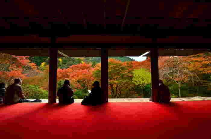 【晩秋の景色】