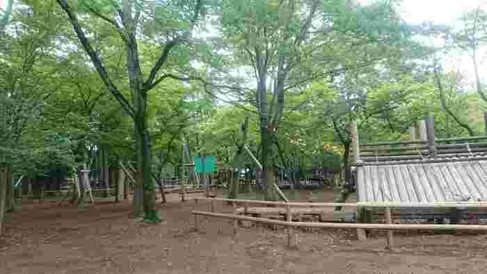 野田市にある清水公園は、国内最大級のアスレチックやBBQサイトなど、様々な施設を完備するファミリー向けの森林公園。キャンプサイトは車の乗り入れ可能なオートキャンプの区画サイトで、6名まで利用できる十分な広さがあります。
