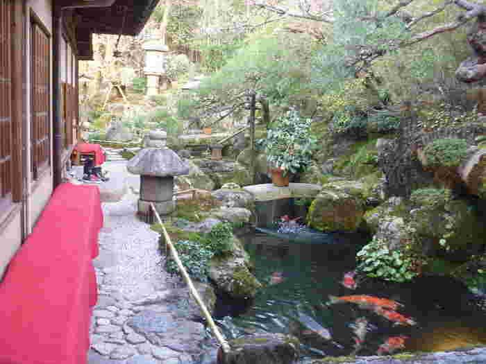 """高台寺参道""""ねねの道""""に面する「洛匠」は、""""草わらびもち""""が有名な茶房です。錦鯉が泳ぐ庭園があることでもよく知られています。"""