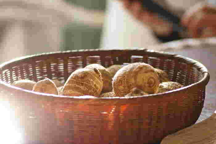 せっかくの栄養たっぷりの里芋も、美味しく食べないと意味がありません。選ぶ時のポイントと、保存方法を覚えておきましょう♪