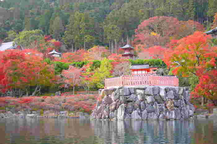 勝尾寺境内に一歩足を踏み入れるとそこは錦絵のような景色が広がっています。背後の深い緑の山間、鮮やかに色づいた境内の樹々、朱色に塗られた寺院建造物が見事に融和した風景は、どこを切り取っても絵になります。