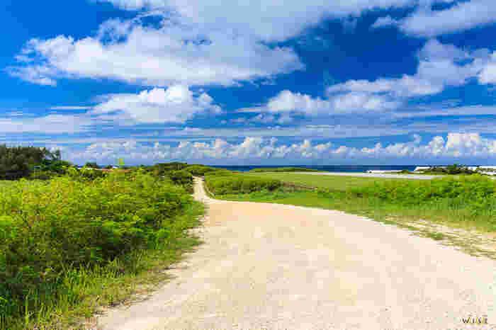 空港滑走路に沿って伸びていくホワイトロード。この道は珊瑚の砂で出来ています。空の青と、自然の緑と、珊瑚の白。3色のみで出来た美しいコントラストはまるで絵画のよう。ゆったりとお散歩するのもリラックス出来ますし、自転車で風を感じながら楽しむのもおすすめ。