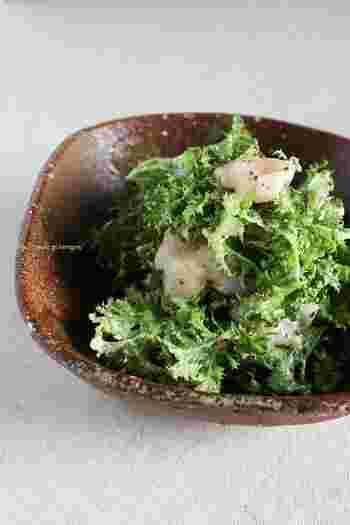 調理方法によって表情を変える『わさび菜』、いかがでしたか?そのまま生で食べるサラダレシピも豊富で、茹でる時も泳がせるようにさっと茹でるなど、時短調理も可能で扱いやすい野菜です。ぜひ普段のレシピにも『わさび菜』レシピを加えて、食卓にさらに彩りを添えてみませんか。