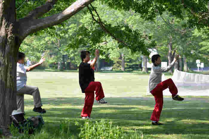 「太極拳」は、古来より中国に伝承された歴史や伝統のある武術。戦闘術や護身術として継承されてきましたが、五臓六腑に効き、健康維持、美容にも効果があることから、1956年から「簡化24式太極拳」という日本のラジオ体操のような初心者向けの簡易太極拳が世に広まりました。
