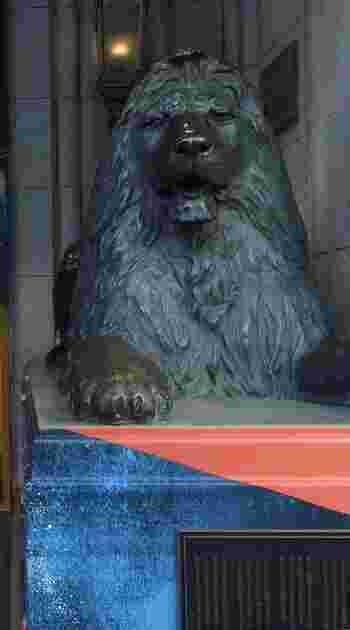 本館正面にあるライオン像は、イギリスで注文されたもので、なんと完成までに3年もの年月を要し、イギリス彫刻界でも話題になったものなんだそう。  最寄りのバス停は「メトロリンク日本橋」、「メトロリンク日本橋Eライン」の「地下鉄三越駅前」になります。