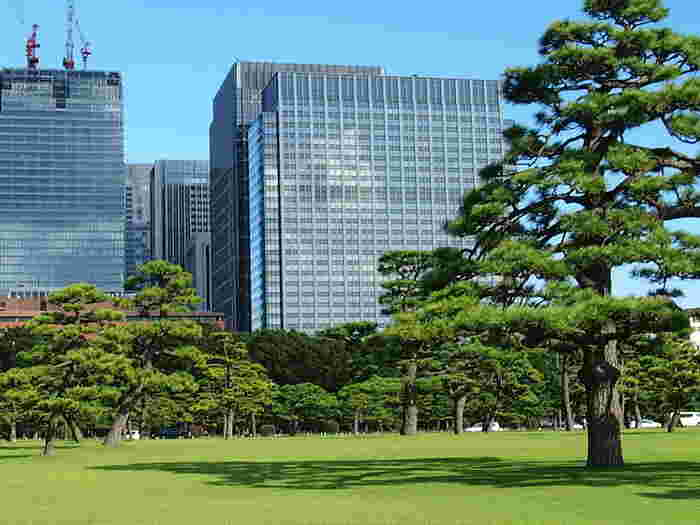 道路を挟んで一歩向かいには、超高層ビル群が立ち並ぶ丸の内や日比谷エリアが広がっています。 日本の経済の要、金融やインフラの企業の本社が連なっている場所がすぐそこです。