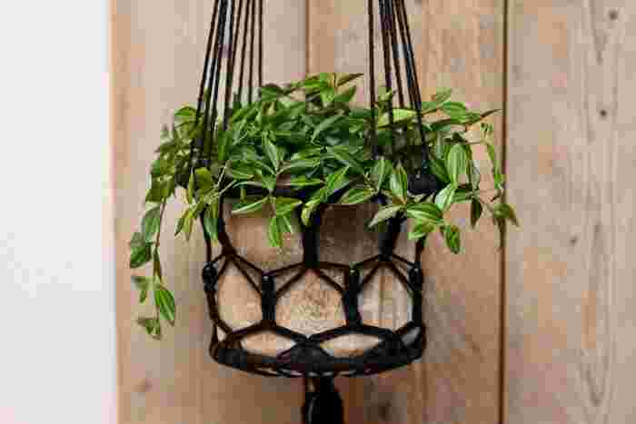 バスケットに植物を入れ、フェンスなどに吊るして飾るとおしゃれ!いくつかの色の花やグリーンを合わせると、豪華な印象で綺麗ですよ。半球形のスリットバスケットがポピュラーで、省スペースで使えます。