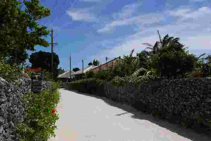 サンゴ礁の隆起によってできた竹富島の道には、サンゴの白砂が敷き詰められています。その両横には、石垣に囲まれた赤瓦屋根の民家が軒を連ねており、沖縄の原風景ともいえる景色が広がっています。