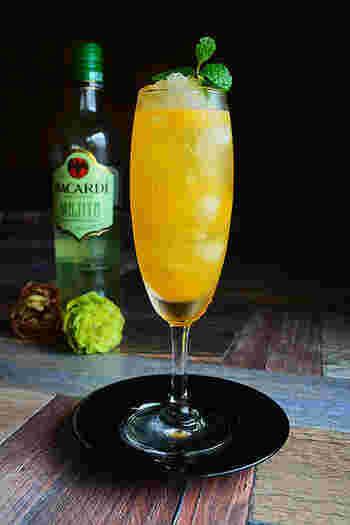 モヒートと言えばミントとライムを潰し、ラム酒と炭酸水で割って作るカクテルですが、こちらはオレンジ果汁とジンジャエールを使ったモヒートのアレンジカクテル。柑橘とラムとジンジャエールは、お互いの相性もバッチリの組み合わせです。