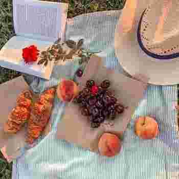 暖かな春の日差しの中で*〈大人ピクニック〉を楽しむアイデア手帖