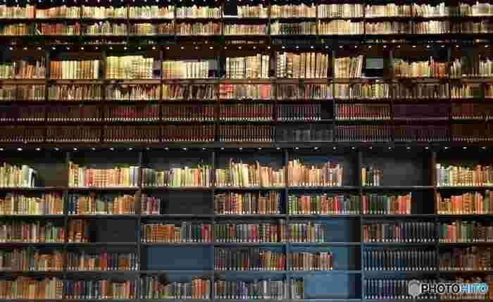 天井までびっしりと美しい本棚があり、圧倒されます。本好きな人は眺めるだけでも幸せな気持ちになれそうな空間です。この本棚にある書籍は、その数何と2万4千点もあります。 企画展、常設展は展示物の保全のため1か月ごとに内容が変わるので、毎月行っても楽しめます。