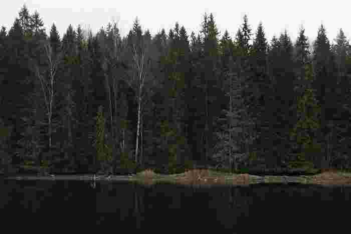 トーベヤンソンは、1914年にフィンランドで生まれました。  父は彫刻家、母は挿絵画家。  6歳ずつ離れた弟が二人います。