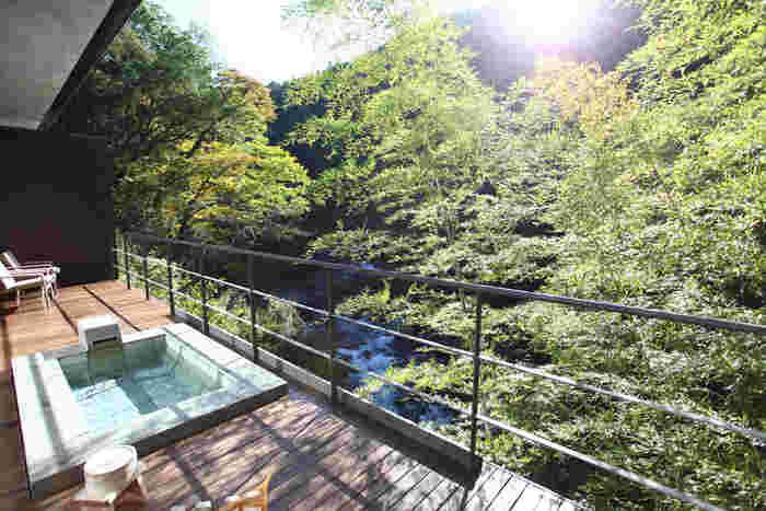 そこで今回は、この時期に訪れたい伊豆エリアの温泉宿をご紹介します。オーシャンビューなど景色も素敵な、上質な時間を過ごせる宿をセレクトしました。