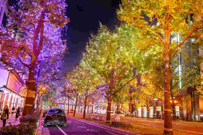 全長4キロメートルにおよぶ御堂筋の両側に植樹された街路樹には色とりどりの電飾が装飾され、冬の通勤客の心をほっこりと温めてくれます。
