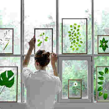 透明のアクリル板で挟むだけの造りだから、壁や空間が背景の一部になるのがユニーク。押し花やリーフを挟んで窓辺に飾ると、窓からの光が透過し、新たな美しさを堪能できます。