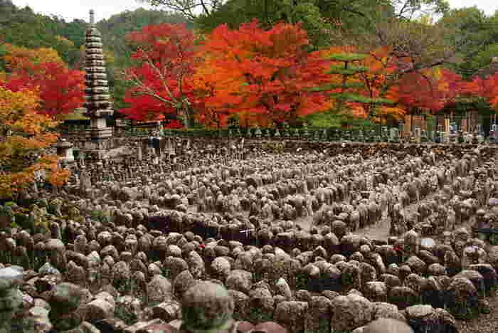 嵯峨野奥地に位置する化野念仏寺は、もともと無縁仏が葬られていたこの地を約1200年前に空海が五智山如来寺を建立し、後に法然が念仏道場を開いたのが起源となっている浄土宗の寺院です。