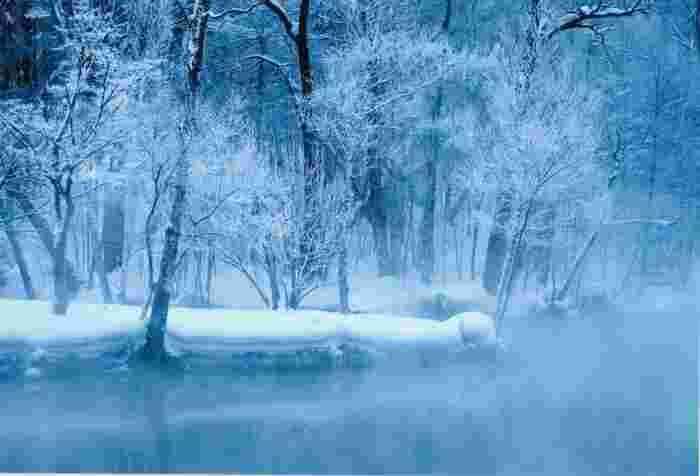 鳥沼公園の沼は、北海道では珍しく不凍です。降り積もった雪に覆われた樹々、静かな水面、立ち込める霧が織りなす幻想的な景色は、寒さを忘れさせてくれるほどの美しさです。