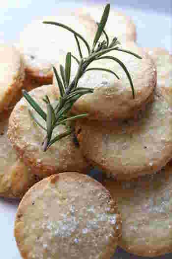 お菓子の定番と言えばやっぱりクッキー。ローズマリーもレモンと相性のよい食材のひとつです。レモンの皮とハーブでちょっと大人味のクッキーに。