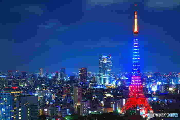 夜の東京を感じる散歩。