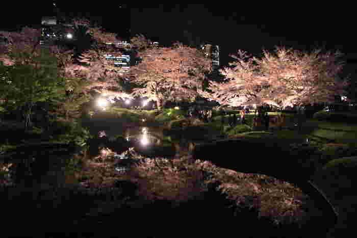 桜の季節には幻想的な風景が楽しめます。