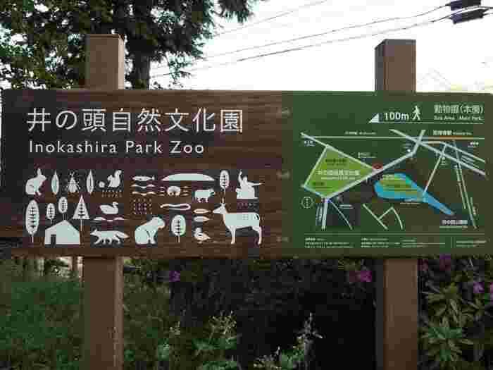 井の頭公園の中にある動物園。ペンギンやモルモット、シカ、サルなどさまざまな動物がいますが、中でも人気なのはリスが暮らしているケージの中に入って間近で観察できる、「リスの小径」です。遊園地や遊具など遊び場も充実しているので、年間パスを購入して散歩コースにしているファミリーも多いのだとか。