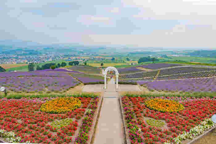 日の出公園は、1948年からラベンダーの栽培を始め、「ラベンダー発祥の地」と刻まれた碑がある上富良野町の市街地近くにある公園です。