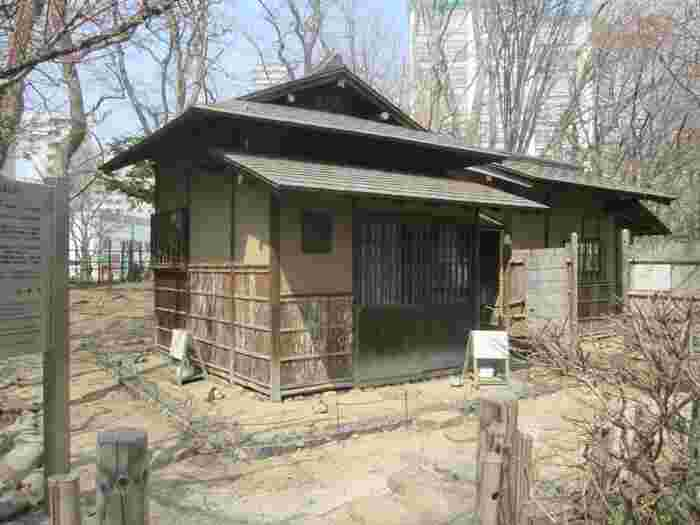 園内の「菖蒲池」のほとりには本格的な日本庭園が。園内の茶室「八窓庵」は、江戸時代初期の大名で茶人でもあった小堀遠州が設計したと伝えられています。1919年(大正8年)に札幌に移設、国の重要文化財に指定されています。